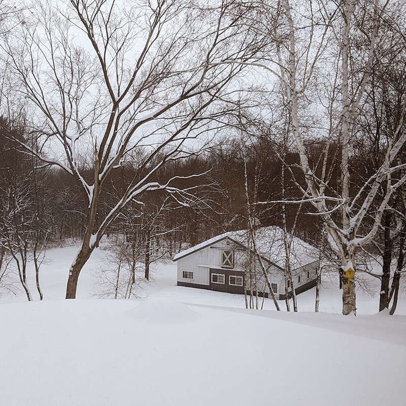 snowy_barn_crop.jpg